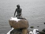 kodan-2009-mala-morska-vila